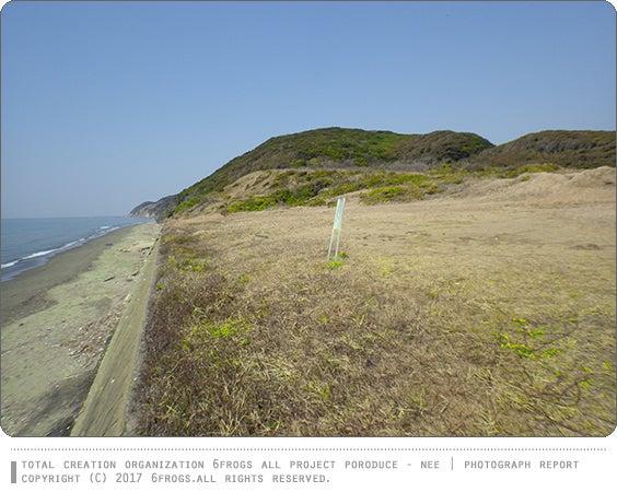 6FROGS スゴログ 行ってみた 磯根崎 東京湾観音
