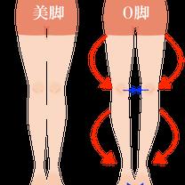 脱・O脚! 治す方法①:お尻の筋肉を起こせ〜その1〜の記事に添付されている画像