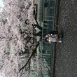 春〜spring
