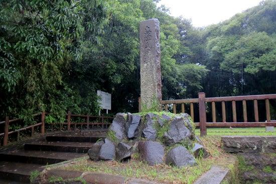 【写9】東福寺城