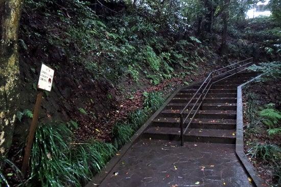 【写6】東福寺城