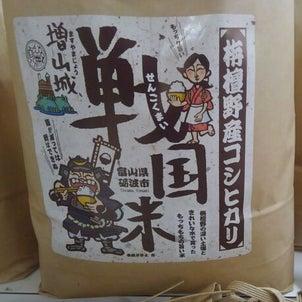増山城戦国米のブログをはじめました。の画像