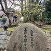 三井寺の桜  その2。の画像