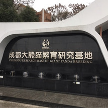 中国、成都への旅♡