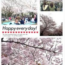 代々木公園にて花見