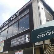 【長野県長野市】2度とやらないと心に決めたのに…~キャッツカフェ長野店さん~