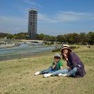 綺麗に咲く芝桜を浜名湖ガーデンパークにて発見!の記事より