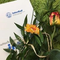 interDaF 語学学校 156-203日目 (C1)の記事に添付されている画像