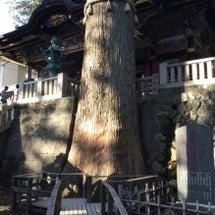 埼玉  秩父三峯神社