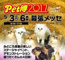 Pet博2017 in 幕張