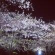 大阪城西の丸庭園、観…