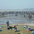 潮干狩り開催日のバー…