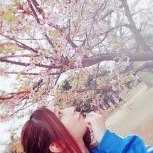 【リラ・ソワーズ】春…