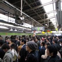 これが日本の文化なの…