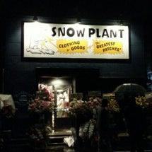 【4/23 SNOW…
