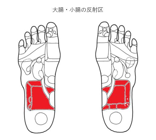 大腸・小腸の反射区