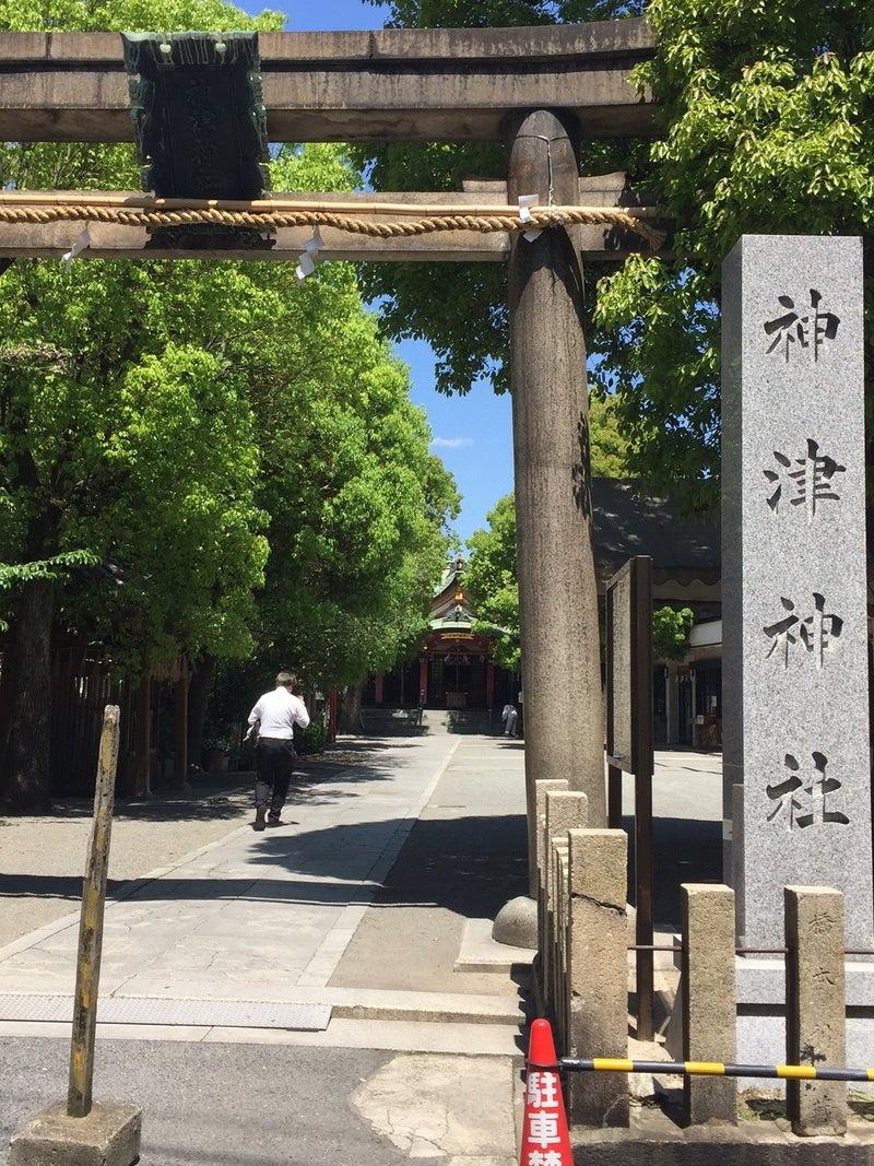 神津神社・初夏の装い