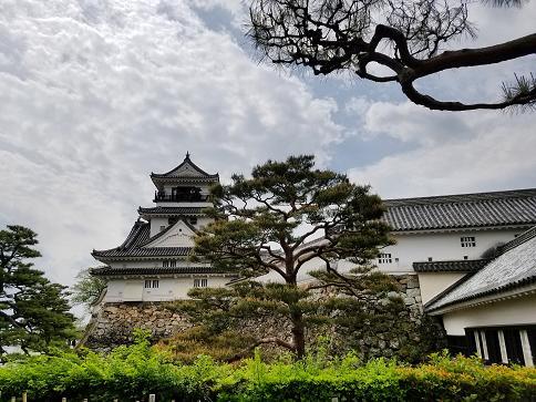 「四国 有名人 高知城 歴史」の画像検索結果
