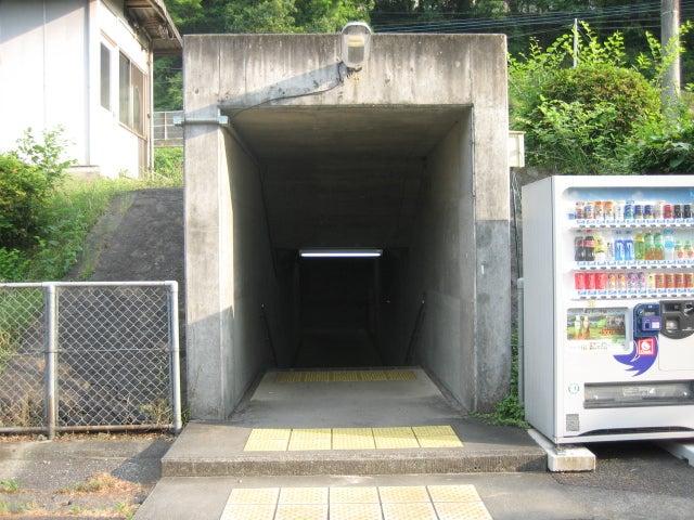 徳島線 #19:江口駅 | 停車場遍...