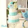 ダイパーケーキ  #015の画像