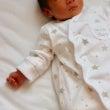第二子出産!ブログを…