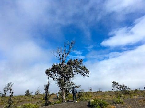 暮らしに愛と勇気を from ハワイ島キーラウエア火山、カラパナ、クムカヒ岬〜ペレの大地〜
