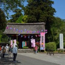 塩船観音寺と羊山公園