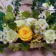 心を癒すお花の作品作…