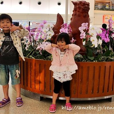 ゚+*西表・石垣島子連れ旅行終了♡沖縄旅行はGWがオススメ!*+゚の記事に添付されている画像