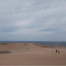 鳥取砂丘で風紋を!