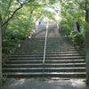 竈門神社は生命力が輝く、透明感いっぱいの聖地★福岡県の画像