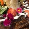 サラダの写真の画像