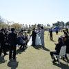★☆★Happy Wedding★☆★の画像