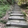 5/27(土) 鎌倉婚活ハイキング開催!の画像