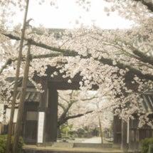 奈良あすか橘寺