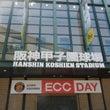 ECC DAY ウエ…