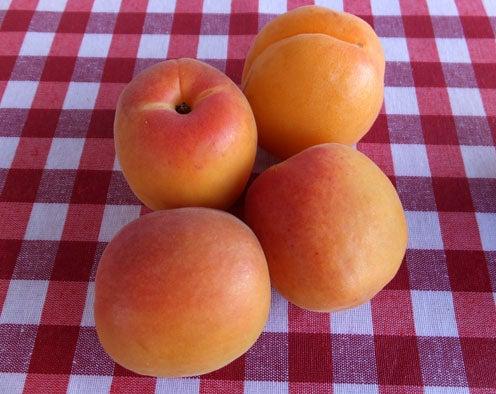 2017-frutas-1