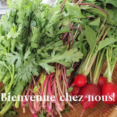 青木農家さんのお野菜での記事に添付されている画像