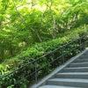 北鎌倉を歩くの画像