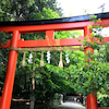 京都の杜若。の画像