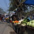 インド・リシケシへヨガ&ヴェーダーンタの旅の記事より