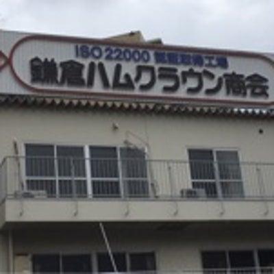 鎌倉ハムクラウン商会 工場直売会へ行ってきました 無塩せき製品が超破格の記事に添付されている画像