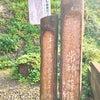福井県常神半島へ行って来ました☆その3の画像