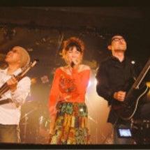5.13 ライブ終了…