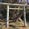 雨引千勝神社(桜川・本木)の画像