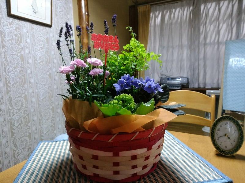 母の日 花駕籠