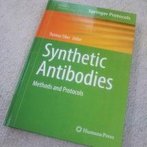 抗体作製の方法をまと…