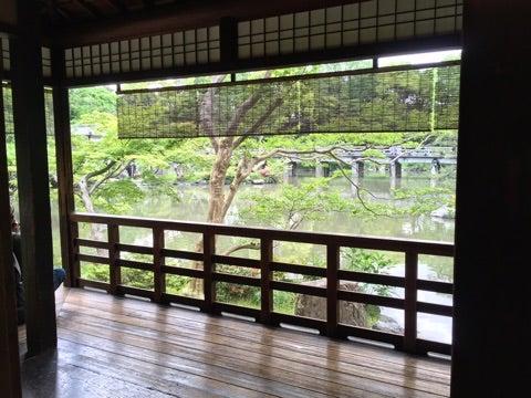 【ご案内】5月15日(水)新緑の季節、葵祭と京野菜を楽しむ旅の記事より