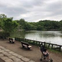 善福寺公園〜杉並区内…