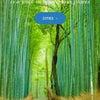 【海外の英文記事】外国人旅行者が見ている?日本の旅行情報の画像